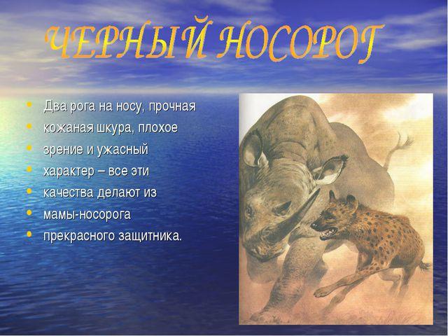 Два рога на носу, прочная кожаная шкура, плохое зрение и ужасный характер – в...