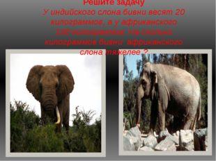 Решите задачу У индийского слона бивни весят 20 килограммов, а у африканского