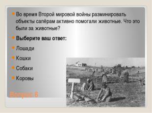 Вопрос 6 Во время Второй мировой войны разминировать объекты сапёрам активно