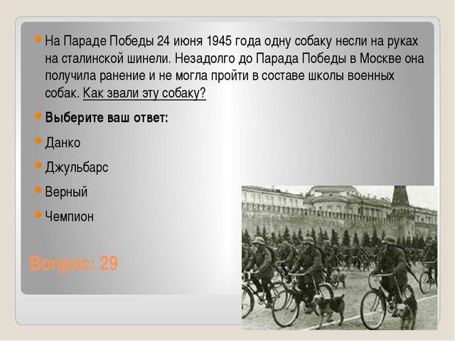 Вопрос: 29 На Параде Победы 24 июня 1945 года одну собаку несли на руках на с...