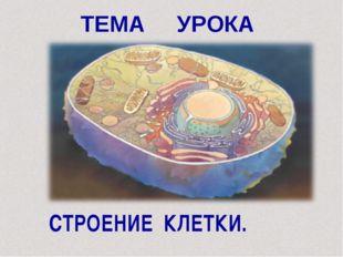 ТЕМА УРОКА СТРОЕНИЕ КЛЕТКИ.