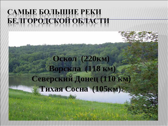 Оскол (220км) Ворскла (118 км) Северский Донец (110 км) Тихая Сосна (105км).