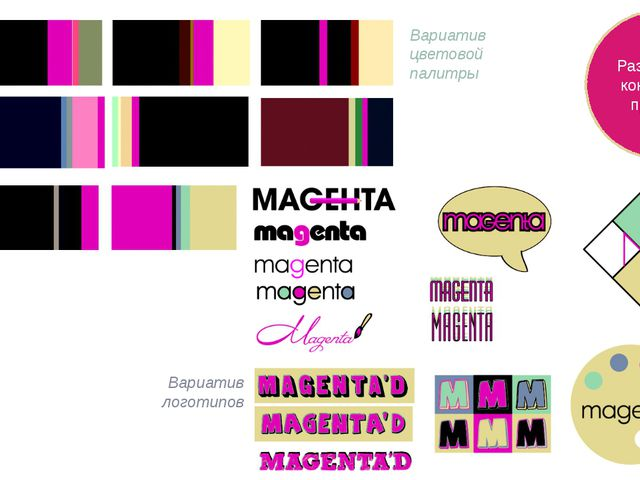 Вариатив цветовой палитры Вариатив логотипов Разработка концепции проекта