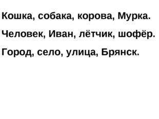 Кошка, собака, корова, Мурка. Человек, Иван, лётчик, шофёр. Город, село, улиц