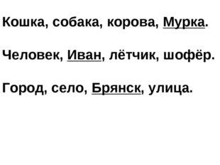 Кошка, собака, корова, Мурка. Человек, Иван, лётчик, шофёр. Город, село, Брян
