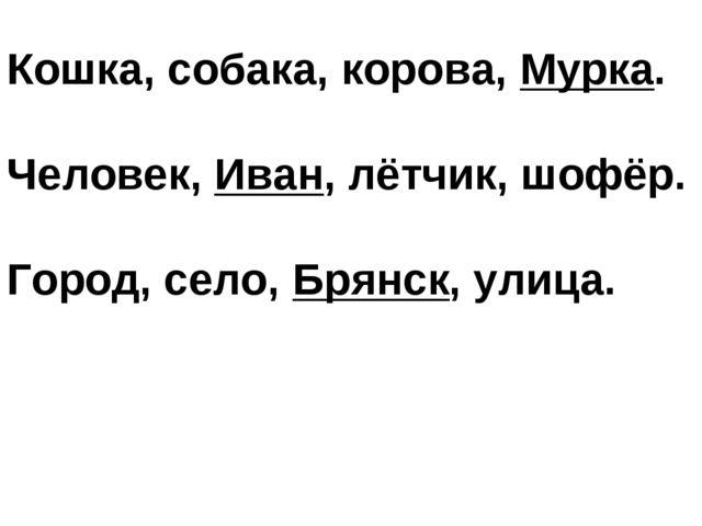 Кошка, собака, корова, Мурка. Человек, Иван, лётчик, шофёр. Город, село, Брян...