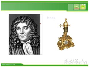 1676 год www.themegallery.com
