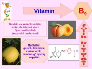 Vitamin B9 Nuklein va aminokislotalar sintezida ishtirok etadi. Qon hosil bo'