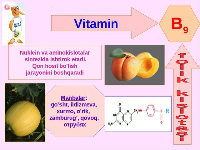 Vitamin B9 Nuklein va aminokislotalar sintezida ishtirok etadi. Qon hosil bo'...