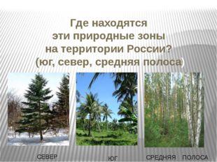 Где находятся эти природные зоны на территории России? (юг, север, средняя по
