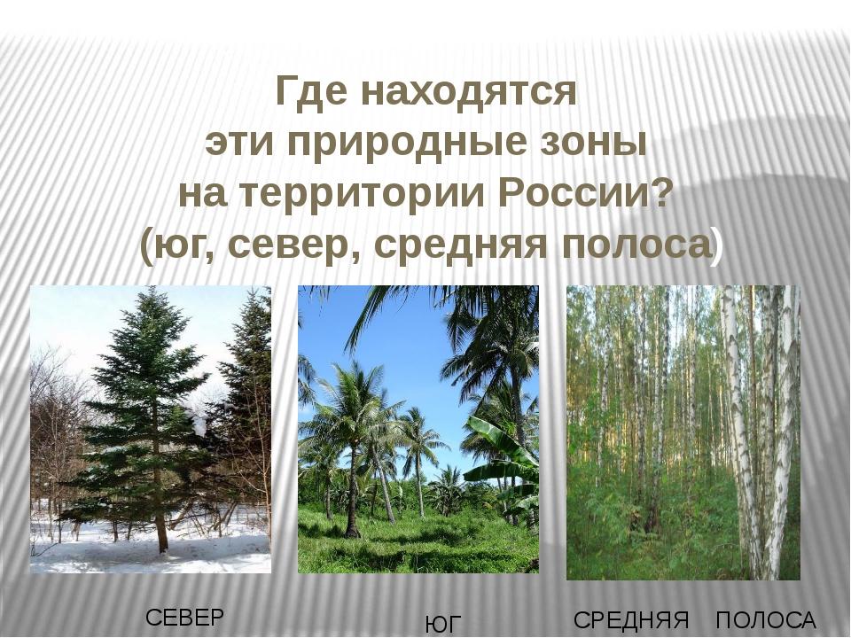 Где находятся эти природные зоны на территории России? (юг, север, средняя по...