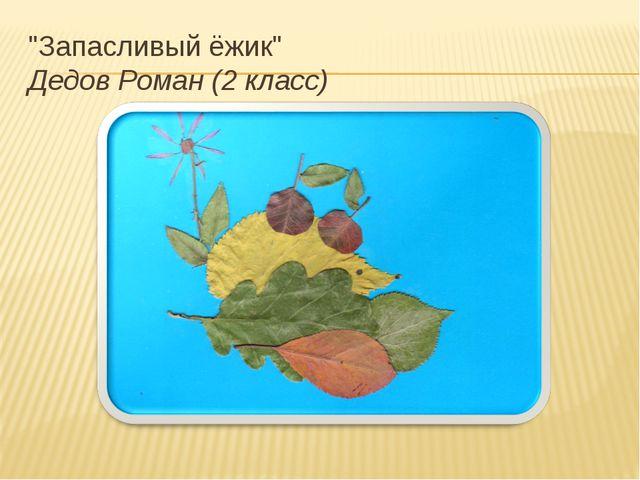 """""""Запасливый ёжик"""" Дедов Роман (2 класс)"""
