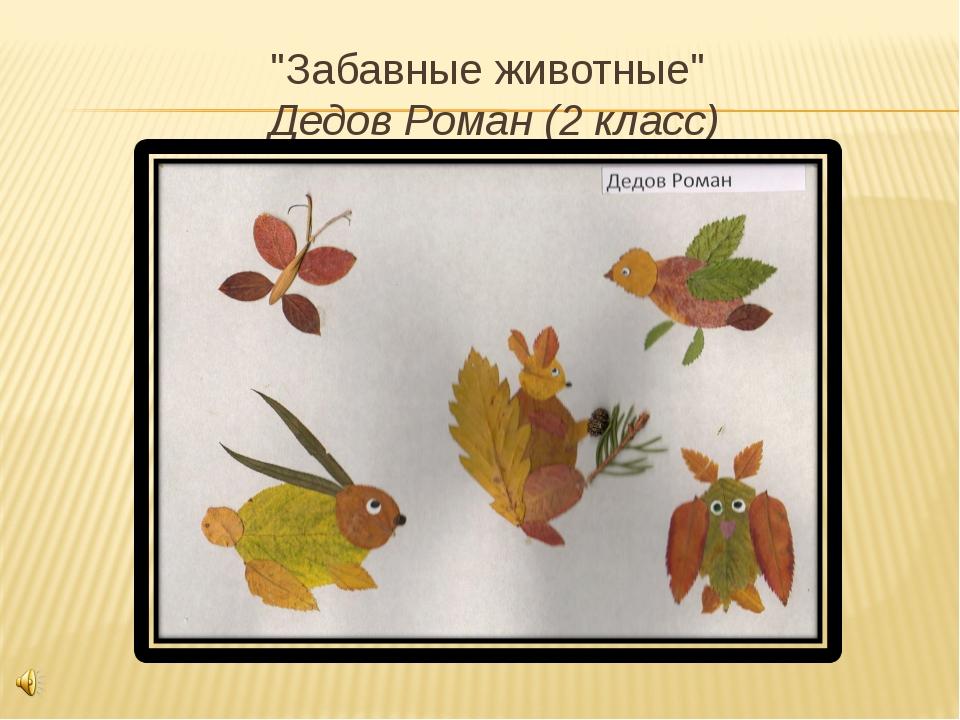 """""""Забавные животные"""" Дедов Роман (2 класс)"""