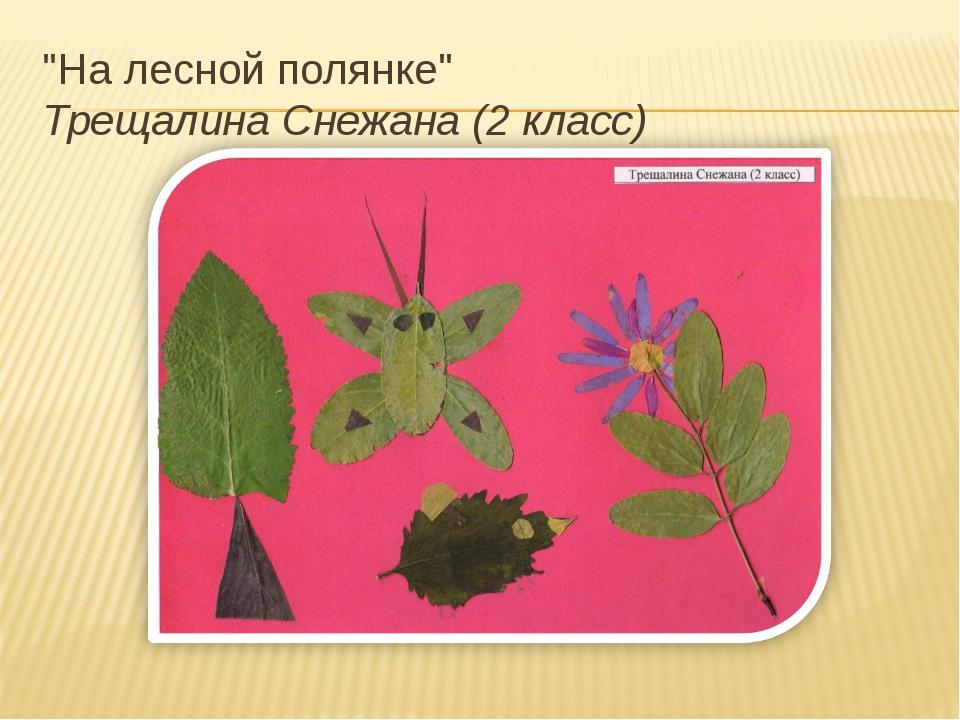 """На лесной полянке"" Трещалина Снежана (2 класс)"