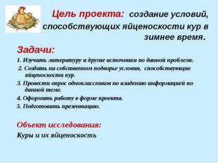 Цель проекта: создание условий, способствующих яйценоскости кур в зимнее вре