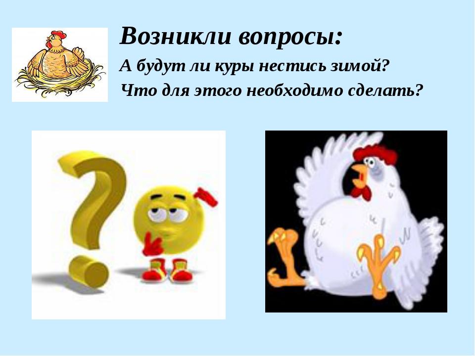 Возникли вопросы: А будут ли куры нестись зимой? Что для этого необходимо сд...
