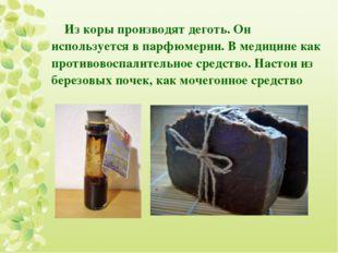 Из коры производят деготь. Он используется в парфюмерии. В медицине как проти