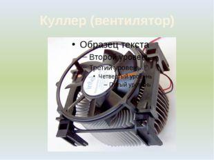 Куллер (вентилятор)