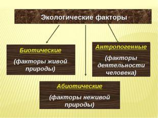 Экологические факторы Биотические (факторы живой природы) Абиотические (факто