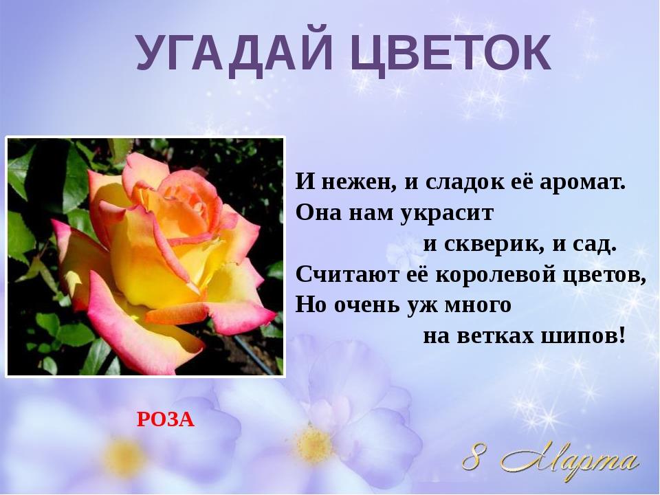 И нежен, и сладок её аромат. Она нам украсит и скверик, и сад. Считают её кор...