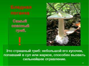 Бледная поганка ! Это страшный гриб: небольшой его кусочек, попавший в суп ил