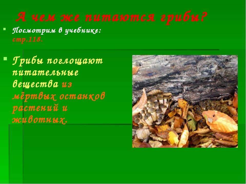 А чем же питаются грибы? Посмотрим в учебнике: стр.118. Грибы поглощают питат...