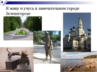 Я живу и учусь в замечательном городе Зеленогорске