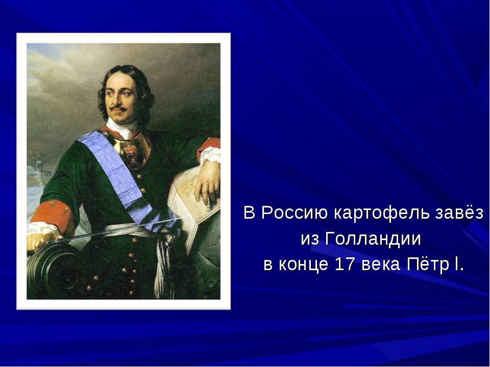 В Россию картофель завёз из Голландии в конце 17 века Пётр l.