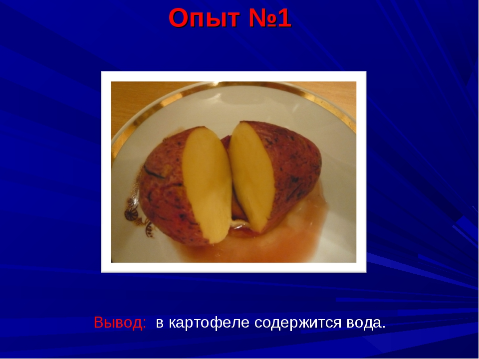 Опыт №1 Вывод: в картофеле содержится вода.