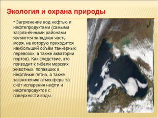 Экология и охрана природы Загрязнение вод нефтью и нефтепродуктами (самыми за