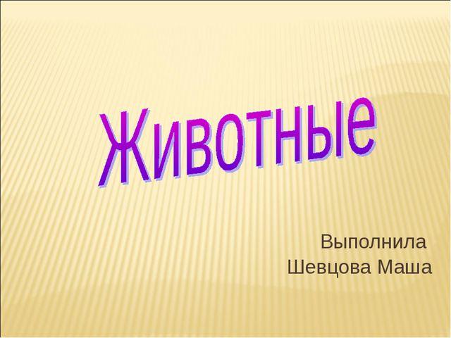 Выполнила Шевцова Маша