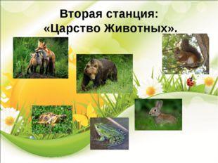 Вторая станция: «Царство Животных».