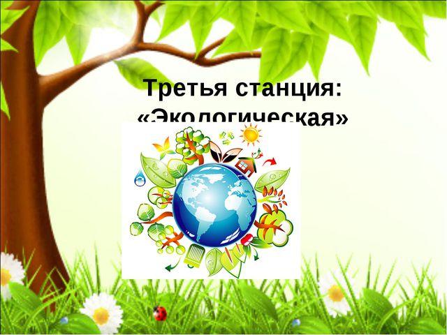 Третья станция: «Экологическая»