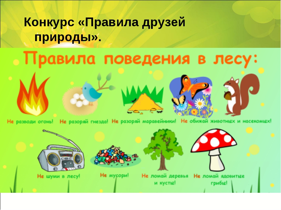 Конкурс«Правила друзей природы».