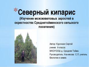 Автор: Курочкин Сергей ученик 9 класса МКОУООШ д. Средняя Тойма Руководитель: