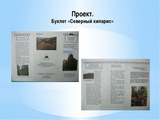 Проект. Буклет «Северный кипарис»