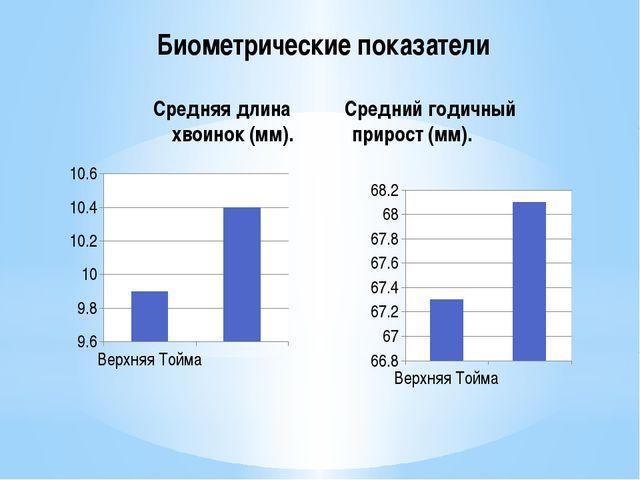 Биометрические показатели Средняя длина Средний годичный хвоинок (мм). приро...