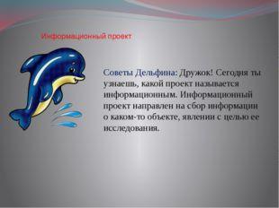Информационный проект Советы Дельфина: Дружок! Сегодня ты узнаешь, какой про