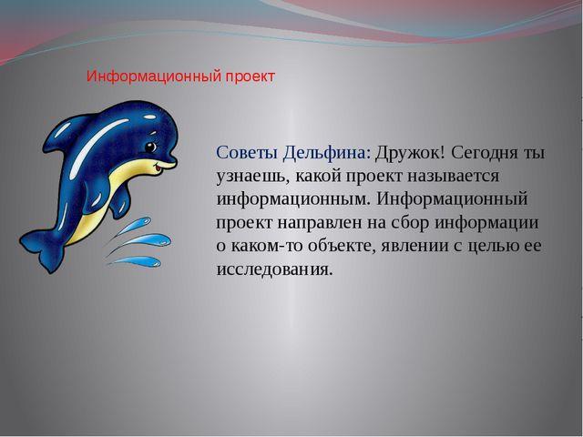 Информационный проект Советы Дельфина: Дружок! Сегодня ты узнаешь, какой про...