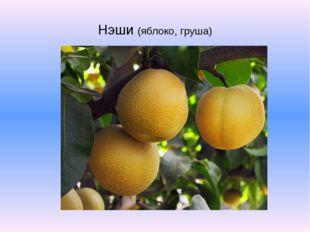Нэши (яблоко, груша)