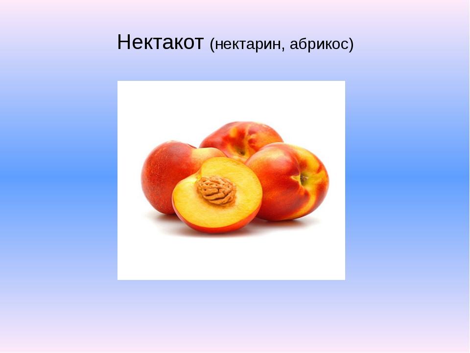 Нектакот (нектарин, абрикос)
