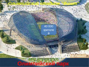 """Олимпийский парк Сочи Большой ледовый дворец """"Большой"""" 12 000 зрителей Ледова"""