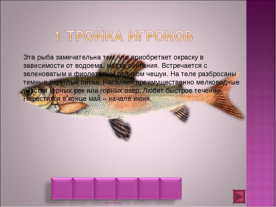 Эта рыба замечательна тем, что приобретает окраску в зависимости от водоема,...
