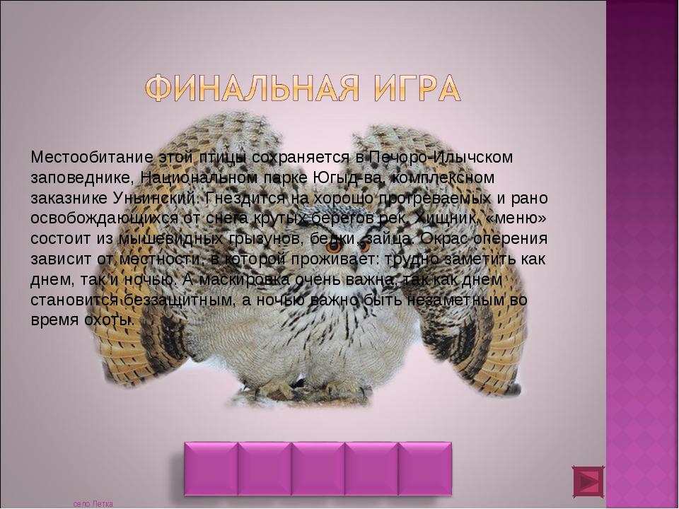 Местообитание этой птицы сохраняется в Печоро-Илычском заповеднике, Националь...