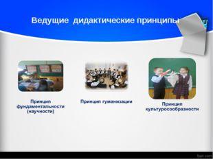 Ведущие дидактические принципы