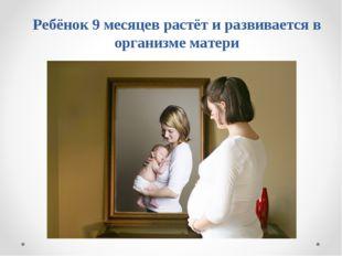 Ребёнок 9 месяцев растёт и развивается в организме матери