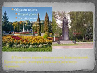 В Туле много парков (Центральный, Комсомольский, Пролетарский) , в которых в
