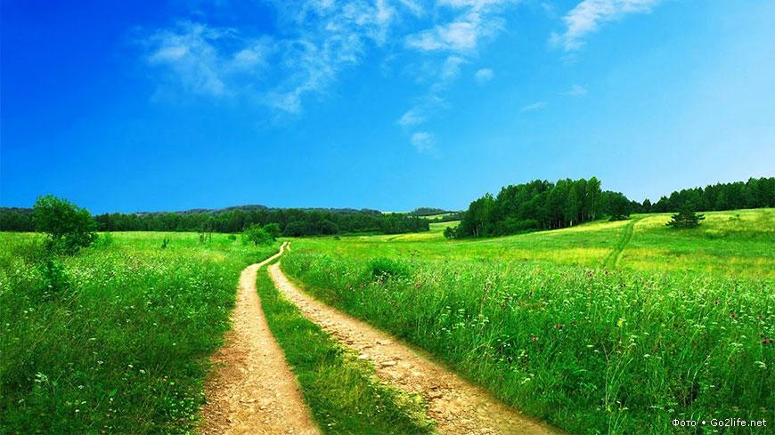 http://www.go2life.net/uploads/posts/2012-04/1334236844_38b407e109.jpg