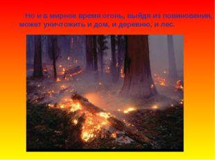 Но и в мирное время огонь, выйдя из повиновения, может уничтожить и дом, и д
