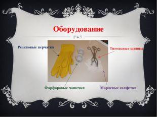 Оборудование Фарфоровые чашечки Тигельные щипцы Марлевые салфетки Резиновые п
